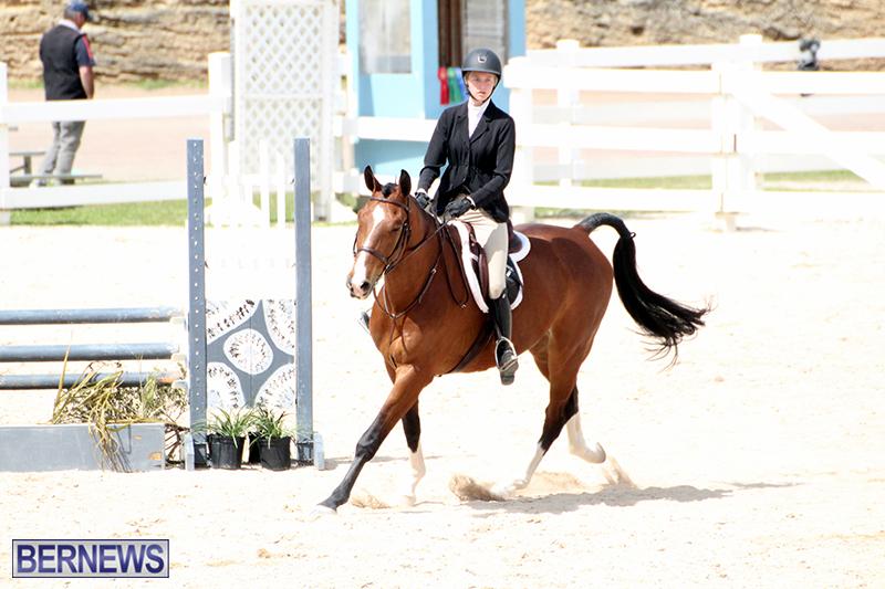 equestrian-Bermuda-Mar-27-2019-16