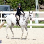 equestrian Bermuda Mar 27 2019 (17)