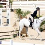 equestrian Bermuda Mar 27 2019 (18)