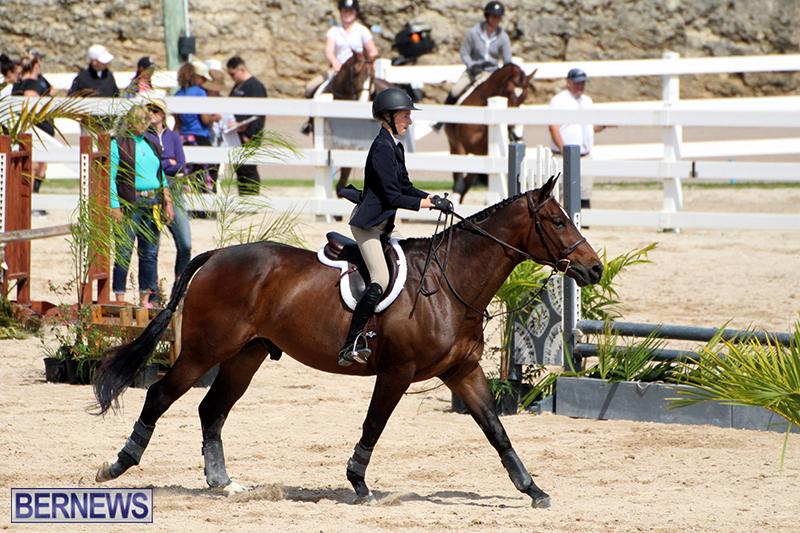 equestrian-Bermuda-Mar-27-2019-2