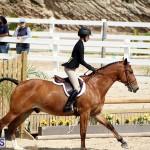 equestrian Bermuda Mar 27 2019 (3)