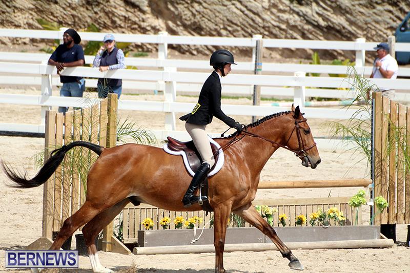 equestrian-Bermuda-Mar-27-2019-3