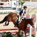 equestrian Bermuda Mar 27 2019 (7)