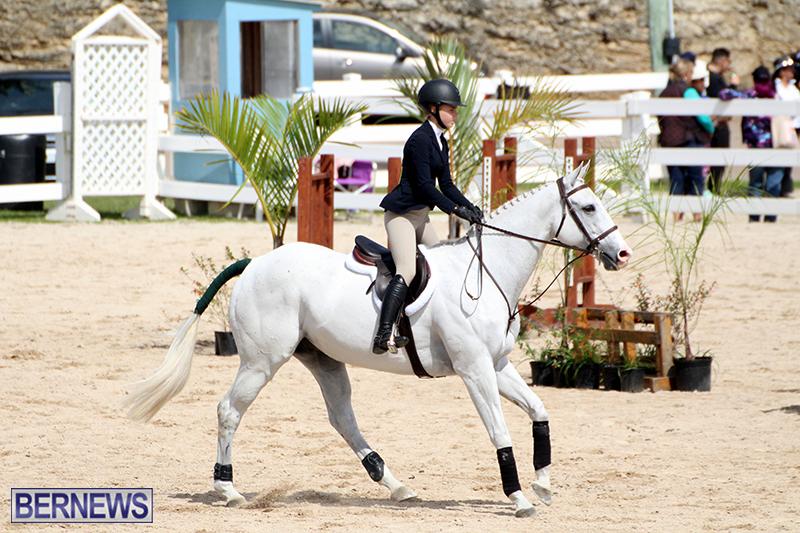 equestrian-Bermuda-Mar-27-2019-9