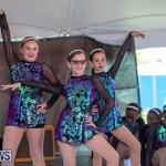 Ag Show At Botanical Gardens Bermuda, April 13 2019-0775