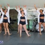 Ag Show At Botanical Gardens Bermuda, April 13 2019-0801