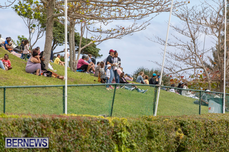 Ag-Show-At-Botanical-Gardens-Bermuda-April-13-2019-0888