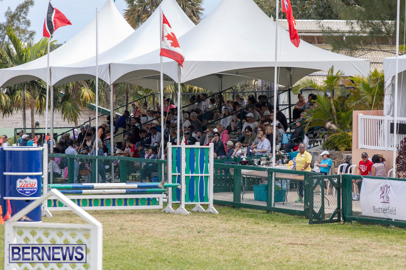 Ag-Show-At-Botanical-Gardens-Bermuda-April-13-2019-0921