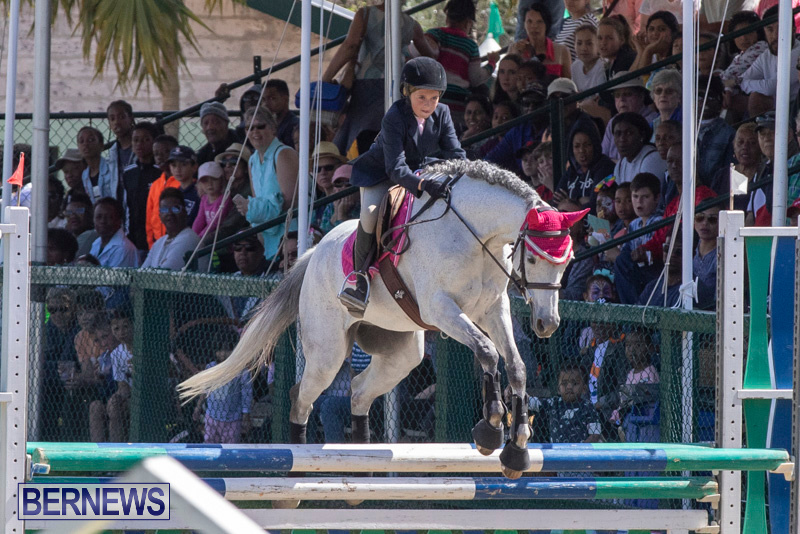 Ag-Show-At-Botanical-Gardens-Bermuda-April-13-2019-0950