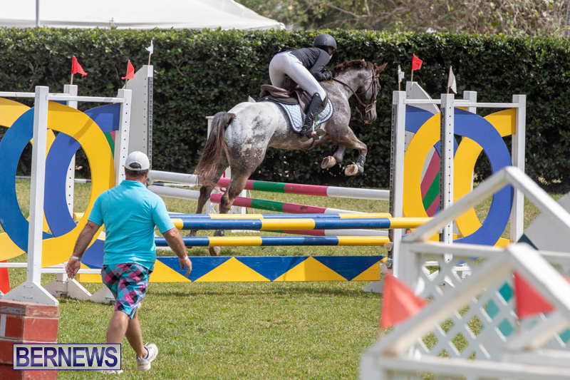 Ag-Show-At-Botanical-Gardens-Bermuda-April-13-2019-1091