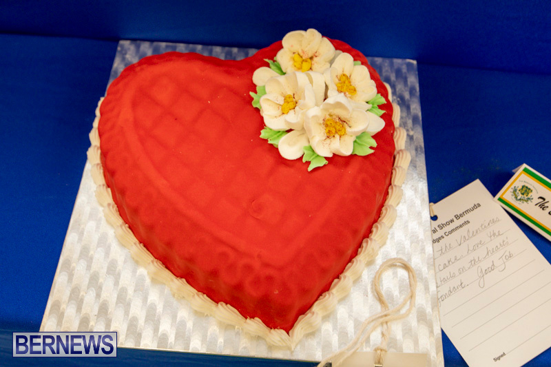 Ag-Show-Baked-Goods-Cakes-Bermuda-April-10-2019-9593