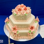 Ag Show Baked Goods Cakes Bermuda, April 10 2019-9603