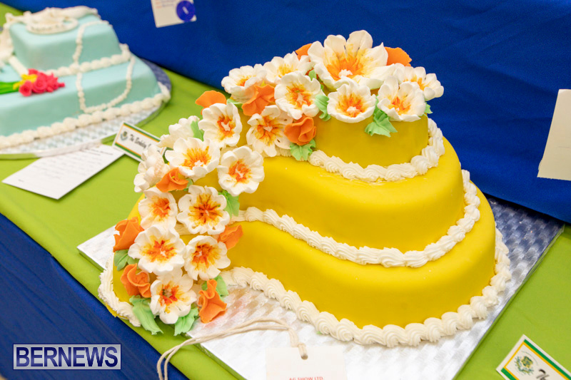 Ag-Show-Baked-Goods-Cakes-Bermuda-April-10-2019-9604