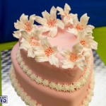 Ag Show Baked Goods Cakes Bermuda, April 10 2019-9617