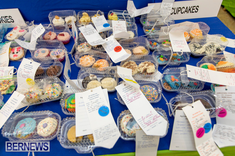 Ag-Show-Baked-Goods-Cakes-Bermuda-April-10-2019-9735