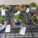Ag Show Plants Bermuda, April 10 2019-9339