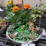 Ag Show Plants Bermuda, April 10 2019-9341