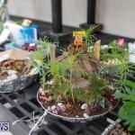 Ag Show Plants Bermuda, April 10 2019-9357