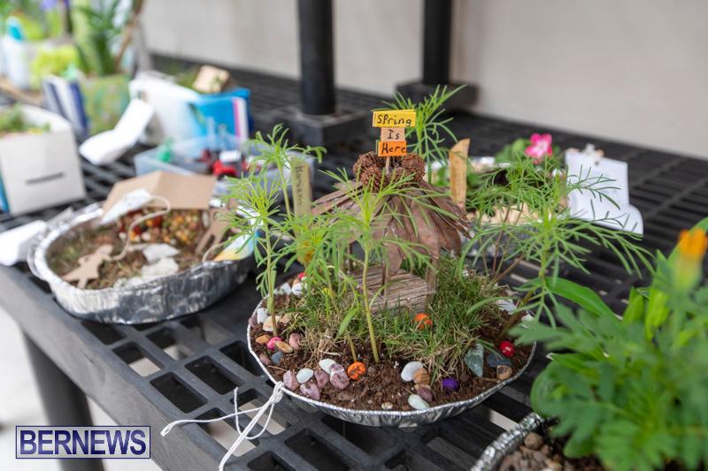 Ag-Show-Plants-Bermuda-April-10-2019-9357