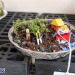 Ag Show Plants Bermuda, April 10 2019-9364