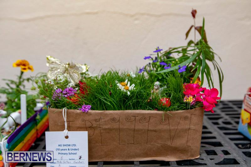 Ag-Show-Plants-Bermuda-April-10-2019-9370