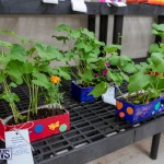 Ag Show Plants Bermuda, April 10 2019-9372