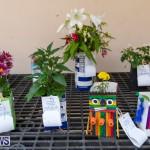 Ag Show Plants Bermuda, April 10 2019-9386