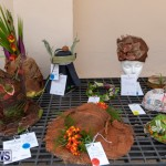 Ag Show Plants Bermuda, April 10 2019-9395
