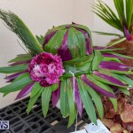 Ag Show Plants Bermuda, April 10 2019-9413