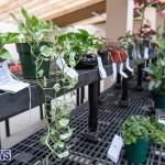 Ag Show Plants Bermuda, April 10 2019-9438