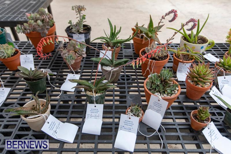 Ag-Show-Plants-Bermuda-April-10-2019-9521