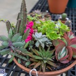 Ag Show Plants Bermuda, April 10 2019-9524