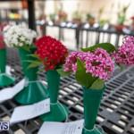 Ag Show Plants Bermuda, April 10 2019-9539