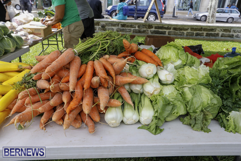 Farmer's Market Eat More Vegetables Bermuda April 10 2019 (11)