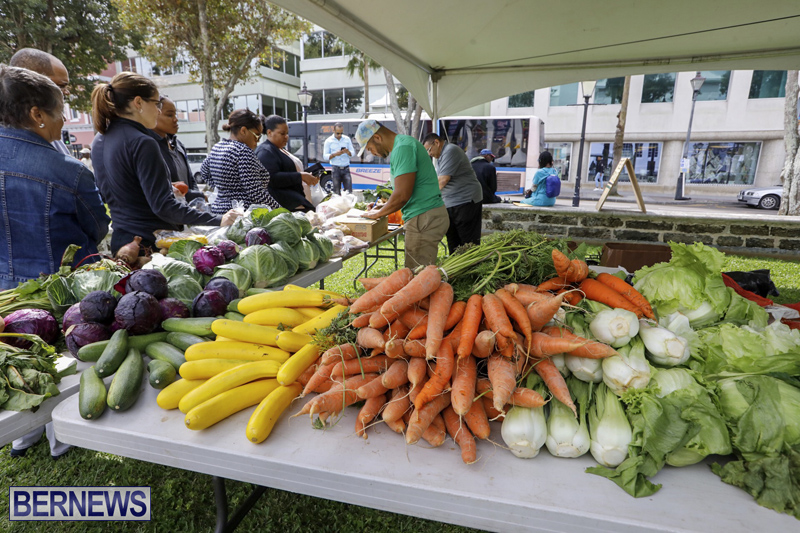 Farmer's Market Eat More Vegetables Bermuda April 10 2019 (12)