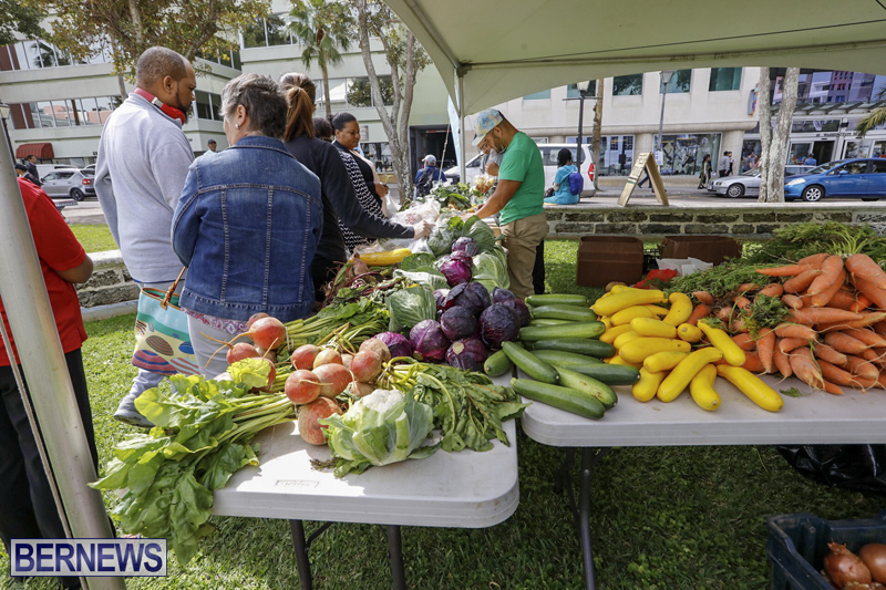 Farmer's Market Eat More Vegetables Bermuda April 10 2019 (13)