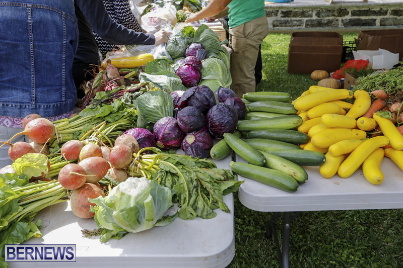 Farmer's Market Eat More Vegetables Bermuda April 10 2019 (14)