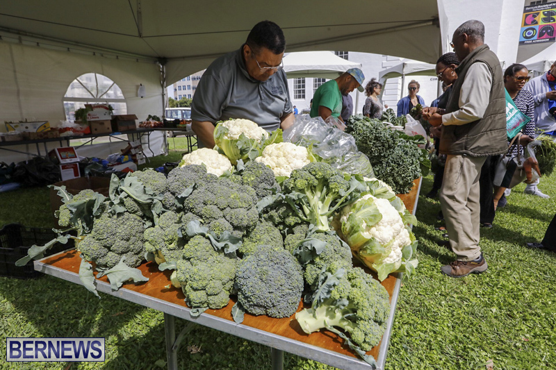 Farmer's Market Eat More Vegetables Bermuda April 10 2019 (5)