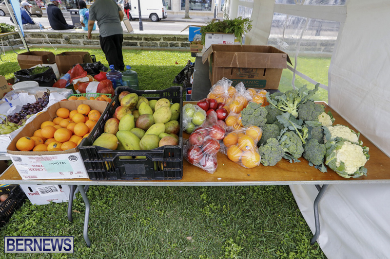 Farmer's Market Eat More Vegetables Bermuda April 10 2019 (8)