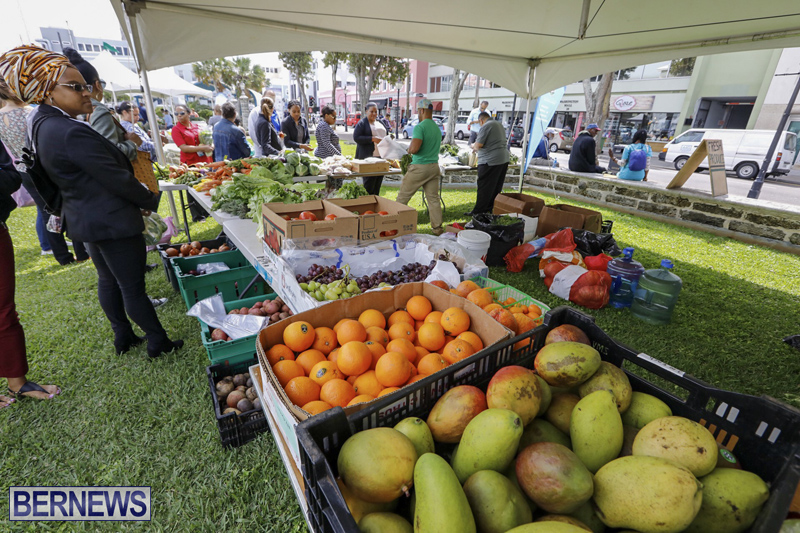 Farmer's Market Eat More Vegetables Bermuda April 10 2019 (9)
