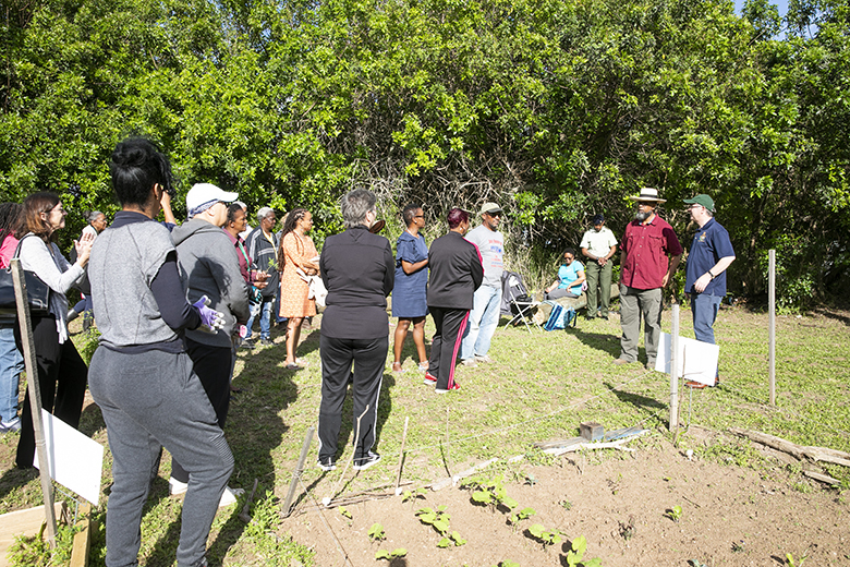 Grow, Eat, Save workshop Bermuda April 2019 (3)