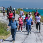 Palm Sunday Walk Bermuda, April 14 2019 (33)