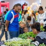 Premier's Children's Easter Egg Hunt Bermuda, April 13 2019-0200