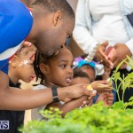 Premier's Children's Easter Egg Hunt Bermuda, April 13 2019-0203