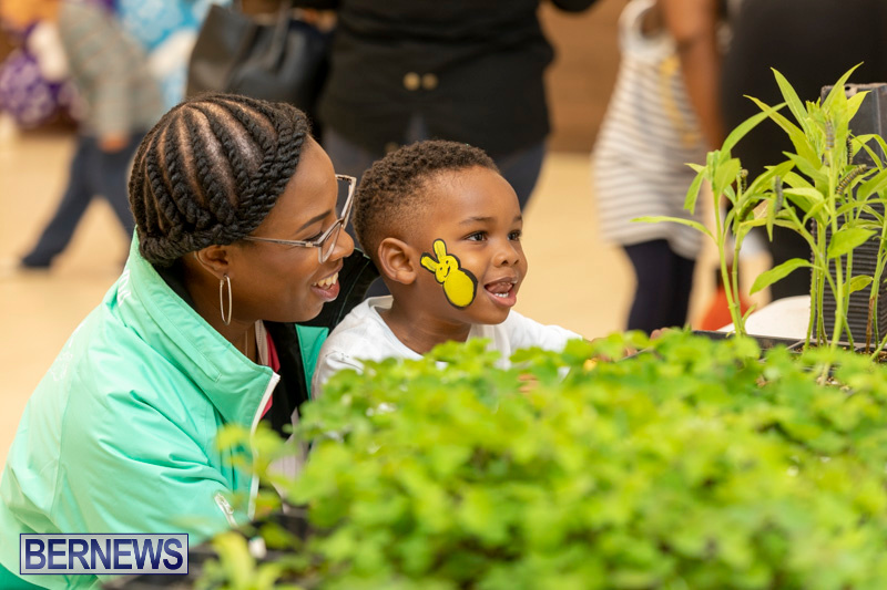 Premier's-Children's-Easter-Egg-Hunt-Bermuda-April-13-2019-0301