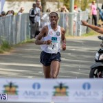 Half Marathon Derby Bermuda Day, May 24 2019-7842