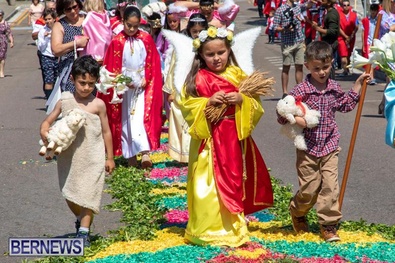Santo-Cristo-Dos-Milagres-Festival-Bermuda-May-19-2019-7423