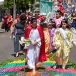 Santo Cristo Dos Milagres Festival Bermuda, May 19 2019-7427