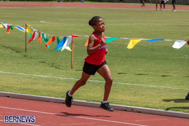 BNAA-National-Championships-Track-Meet-Bermuda-June-8-2019-4327