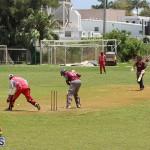 Bermuda Cricket June 9 2019 (2)